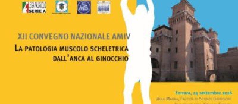 XII CONGRESSO NAZIONALE AMIV – LA PATOLOGIA MUSCOLO SCHELETRICA DALL'ANCA AL GINOCCHIO